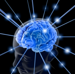 Neuroscience and Increasing Awareness