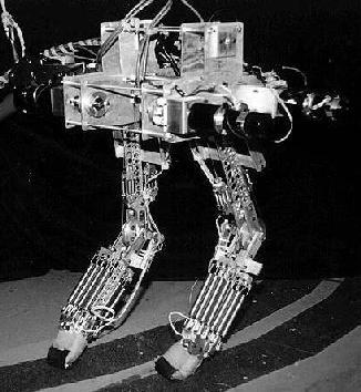 Spring Turkey Bot, 1994-1996
