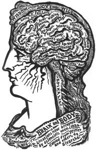 brainbodymap1884