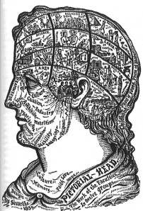 brainmappictorial-head