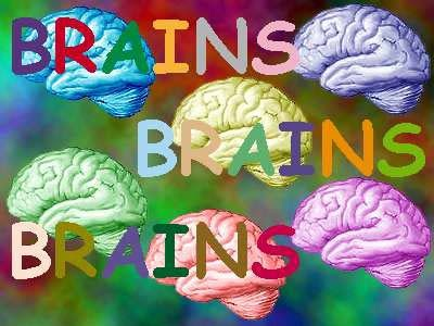 brainsbrainsbrains
